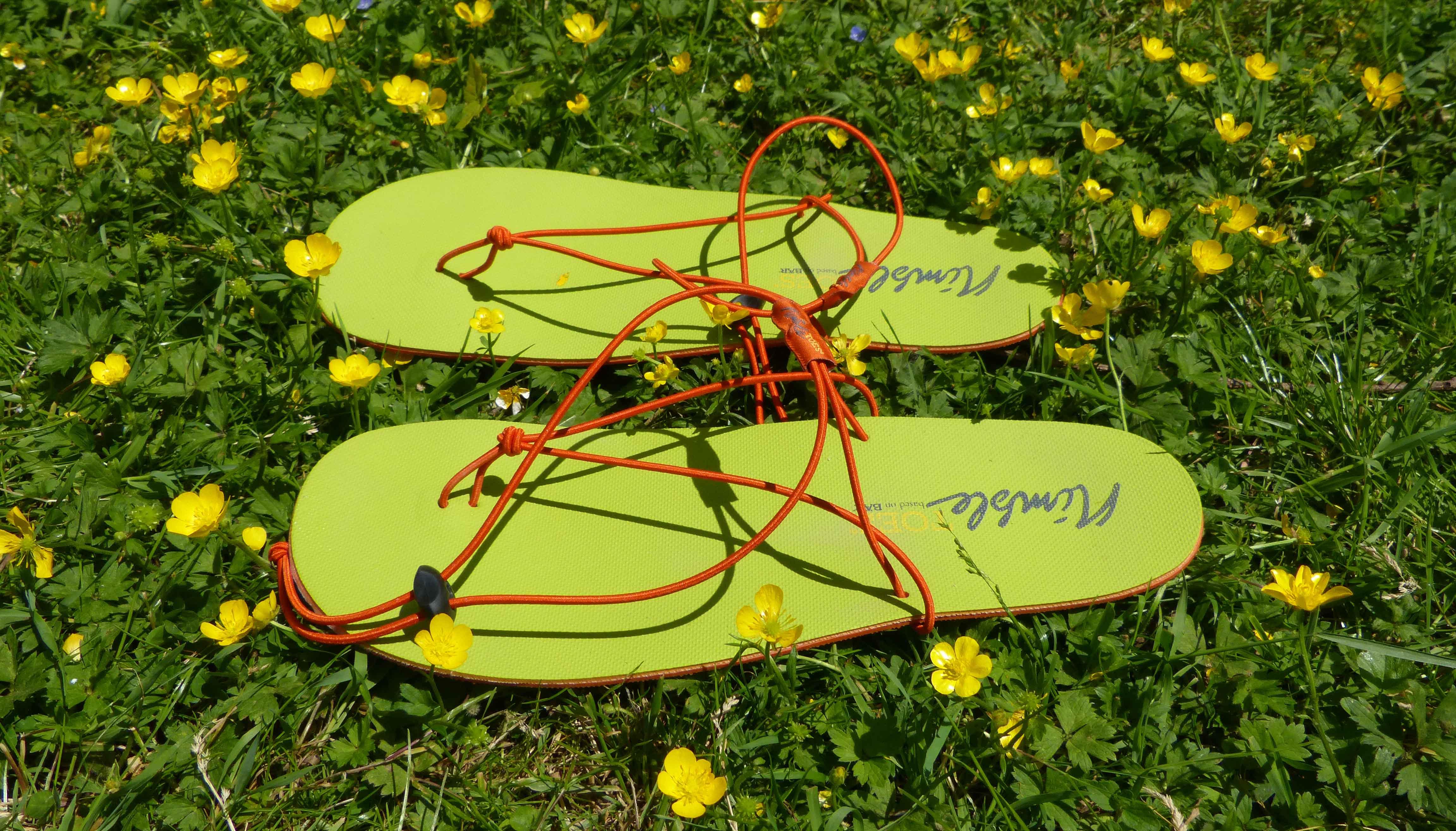 official photos 2357a 3efb6 Warum Flip-Flops keine Barfußschuhe sind. - Equilibrium State DE